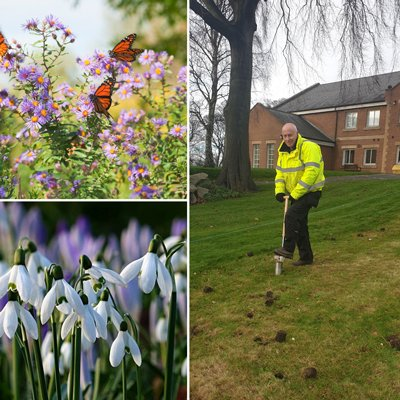 Spring colour provides feast for wildlife, too